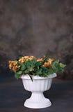 Plantador hermoso con el apoyo de Digitaces de las flores Fotos de archivo
