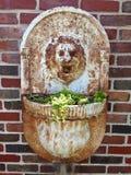 Plantador principal de la pared del león foto de archivo libre de regalías