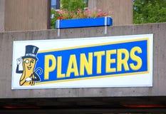 Plantadores Imagen de archivo libre de regalías