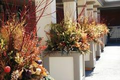 Plantadores da flor Fotos de Stock Royalty Free