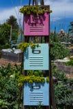 Plantadores del cabinete de archivo Fotos de archivo libres de regalías