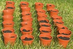 Plantadores en el jardín Fotografía de archivo