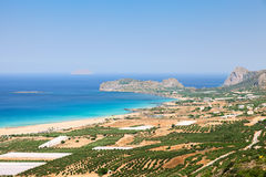 Plantações das oliveiras ao lado do mar Foto de Stock Royalty Free