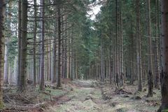 Plantage Hoverdal Στοκ εικόνες με δικαίωμα ελεύθερης χρήσης