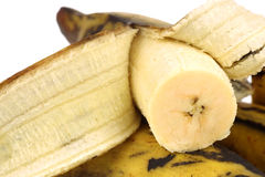 Plantain (baking) bananas Stock Photography
