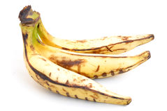 Plantain Banana Royalty Free Stock Photography