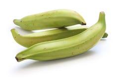 Plantain banana. On white background Royalty Free Stock Image
