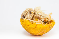 Plantain cup filled with chicken and mushrooms Stock Images