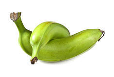 Plantain. Is a starchy and low in sugar banana that is cooked before serving as it is unsuitable raw Stock Photo