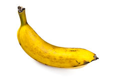 Plantain Stock Photo