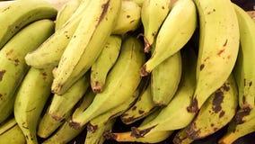 plantains photos stock