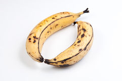 Plantains Royalty Free Stock Image