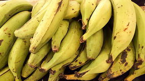 Plantains Stock Photo