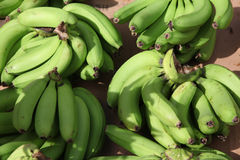 Plantains verts Images libres de droits