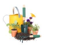 Plantando flores e ervas novas no jardim Imagens de Stock