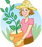 Plantando uma árvore Fotografia de Stock