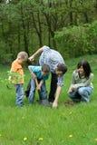 Plantando uma árvore Imagem de Stock Royalty Free