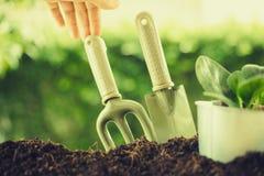 Plantando uma planta pequena em uma pilha do solo no fundo verde do bokeh foto de stock royalty free