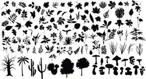 Plantas ilustração stock
