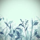 Plantas abstractas Imagen de archivo libre de regalías