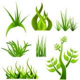 Plantas ajustadas Fotografia de Stock Royalty Free