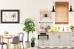 Plantas al lado de sillas y tabla en interior gris de la cocina con el pi imagen de archivo