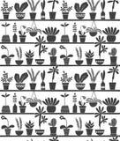 Plantas caseras en los estantes Foto de archivo
