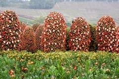 Plantas chinas del Año Nuevo Fotos de archivo