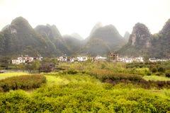 Plantas coloridas y montañas especiales Imagen de archivo