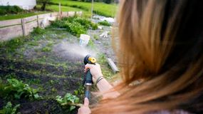Plantas crescentes molhando da mulher em seu jardim fotos de stock royalty free