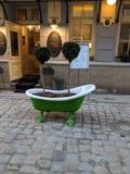 Plantas da arte da rua Imagem de Stock