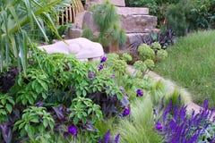 Plantas de florescência Imagens de Stock