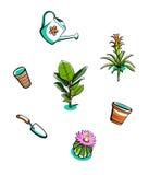 Plantas de interior y herramientas de jardín Foto de archivo