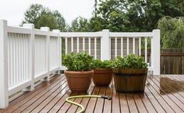Plantas de jardín de riego en patio imagenes de archivo