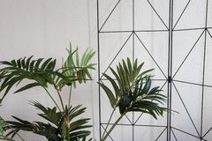 Plantas de la casa en el diseño moderno blanco, fondo del primer fotografía de archivo
