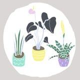 Plantas de la casa fijadas stock de ilustración