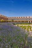 Plantas de la lavanda y edificios históricos en Aranjuez, España Fotografía de archivo libre de regalías