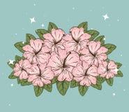 Plantas de las flores con las hojas y los pétalos naturales ilustración del vector
