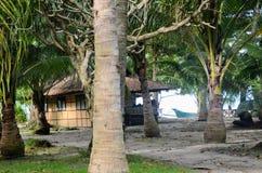 Plantas de los árboles del centro turístico del viaje del verano de la choza foto de archivo libre de regalías