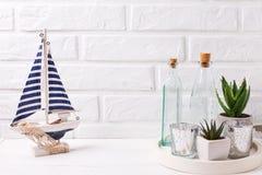 Plantas de los Succulents en potes en la bandeja y el barco decorativo cerca por la pared de ladrillo blanca fotos de archivo libres de regalías
