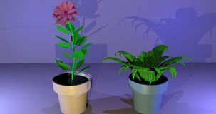 Plantas de potenciômetro incomuns ilustração stock