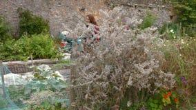 Plantas de riego de la mujer bastante joven metrajes