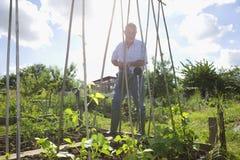 Plantas de riego del hombre mayor en la asignación fotos de archivo