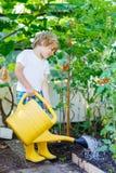 Plantas de riego del muchacho del niño en invernadero Imagenes de archivo