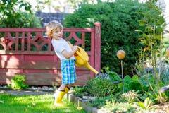 Plantas de riego del muchacho del niño en jardín en verano Imagen de archivo