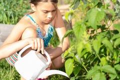 Plantas de riego de la muchacha imágenes de archivo libres de regalías