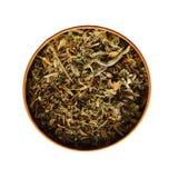 Plantas de té secadas Fotos de archivo libres de regalías