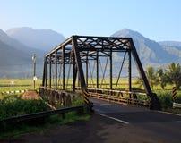 Plantas de Taro na ponte de Hanalei imagem de stock