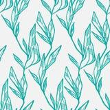 Plantas de tiesto fijadas Imagen de archivo