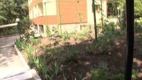 Plantas decorativas alrededor del chalet en el parque búlgaro Rosinets almacen de metraje de vídeo